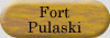 Fort Pulaski button